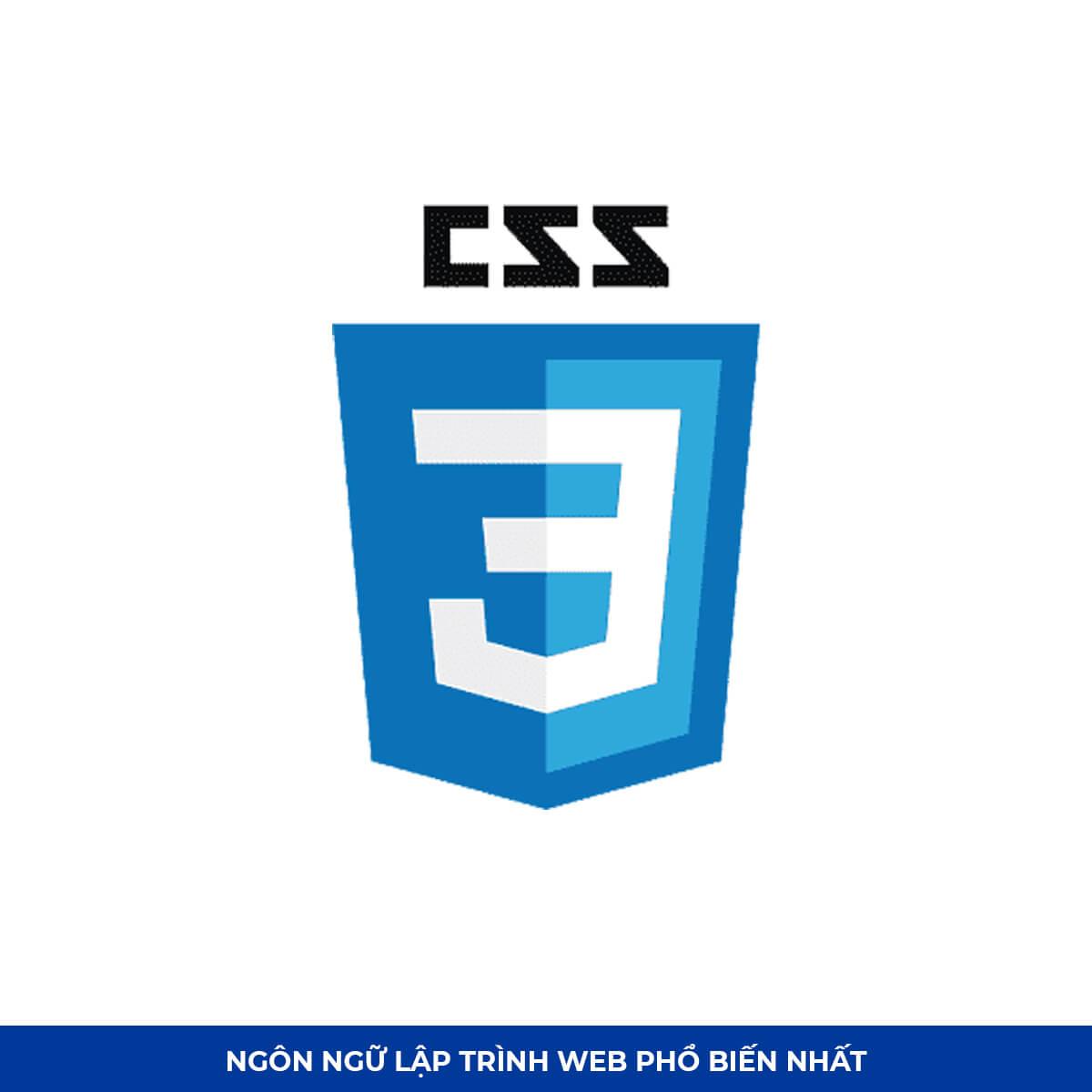 Top Ngôn ngữ lập trình web #10: CSS